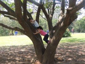 Afinal, qual a importância de conectar as crianças à natureza?