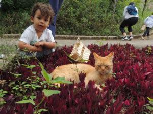 Uma nova geração de guardiões da natureza